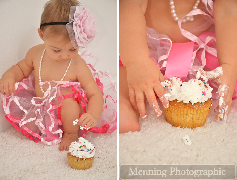 Addison First Birthday Photography