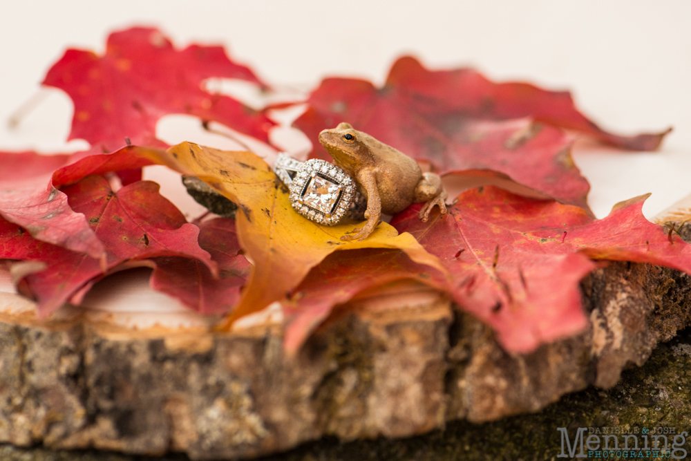 Brittney_Tyler_Fall-Country-Rustic-Engagement-Session_Youngstown-OH-Photographers_0049