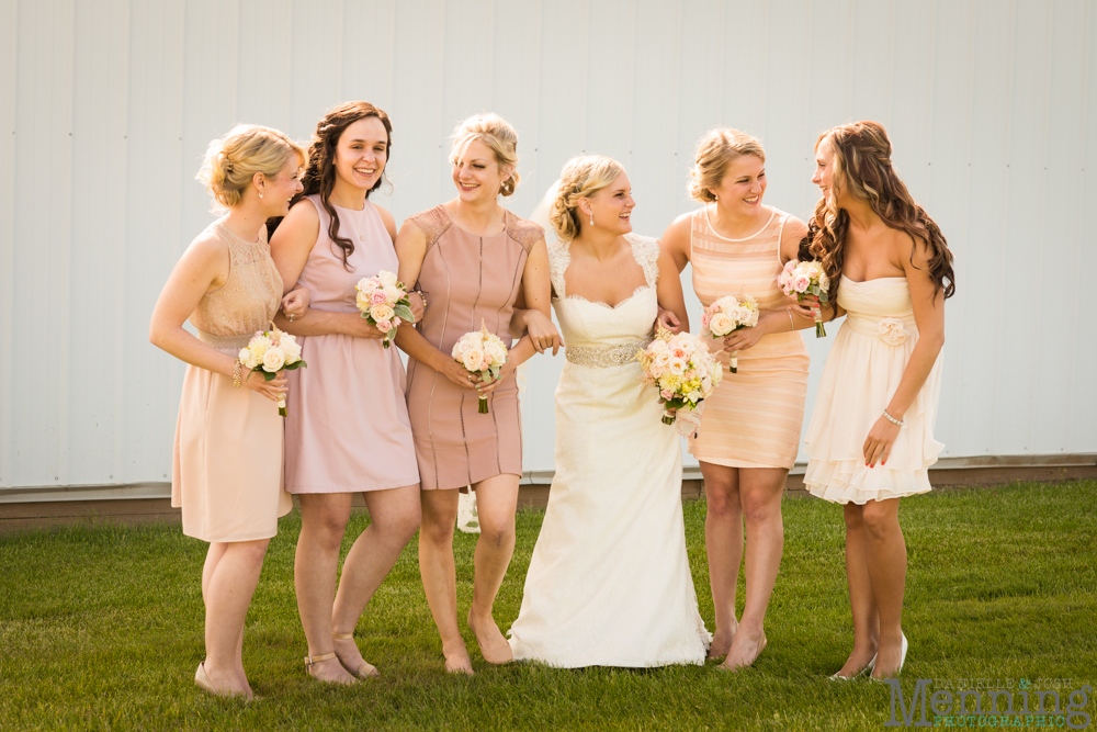 Jamie_Tyler_The-Links-at-Firestone-Farms-Youngstown-OH-Wedding-Photography_0037
