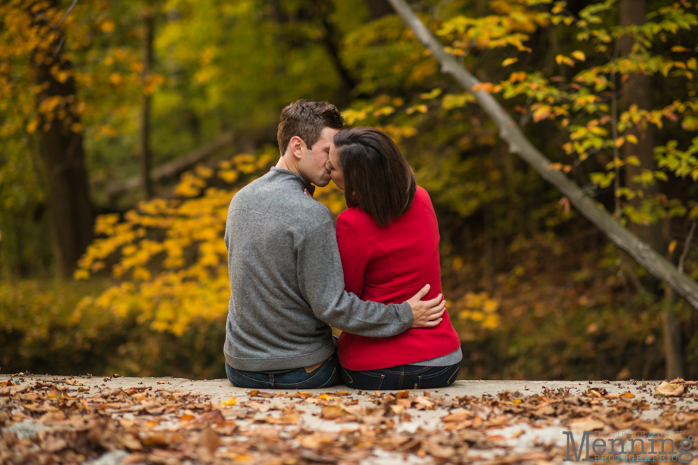 fall leaves engagement photos