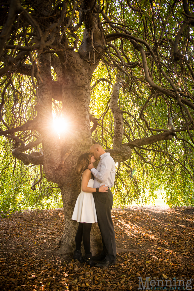 willow tree engagement photos