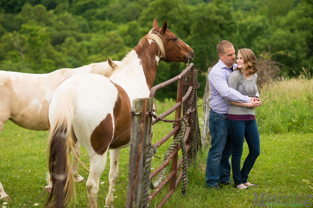horses in engagement photos
