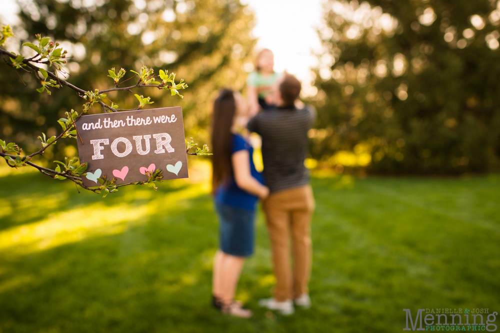Youngstown family photography